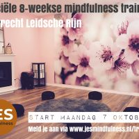 Start 7 okt | 8 weekse Mindfulness training