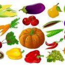 Lekker lokaal eten verbouwen en kopen